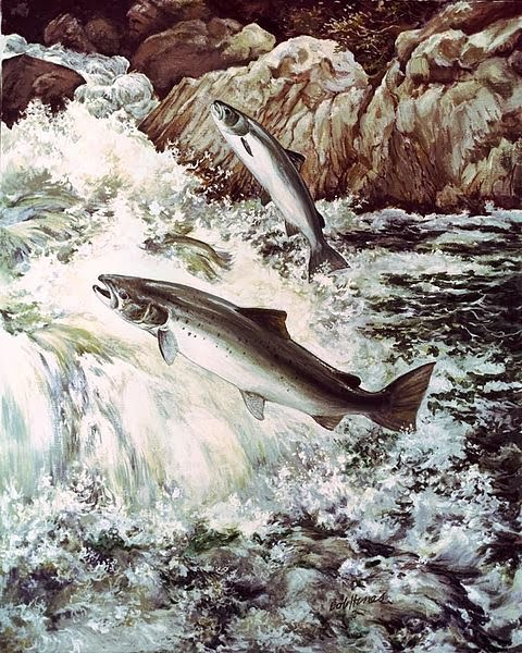 http://commons.wikimedia.org/wiki/File:Salmon_fish_swimming_upstream.jpg